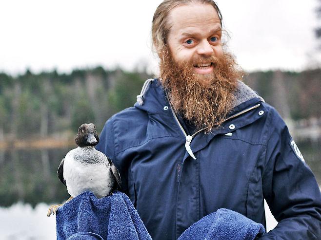 pato-noruego-4